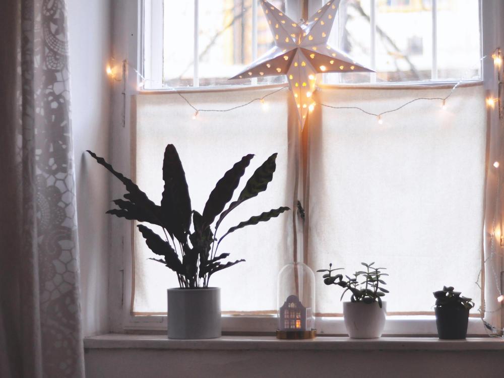 Lichterketten für Weihnachten ins Fenster hängen