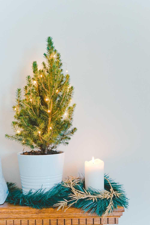 Minimalistische Weihnachtsdeko Idee mit Lichterketten